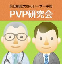 第10回PVP研究会学術集会